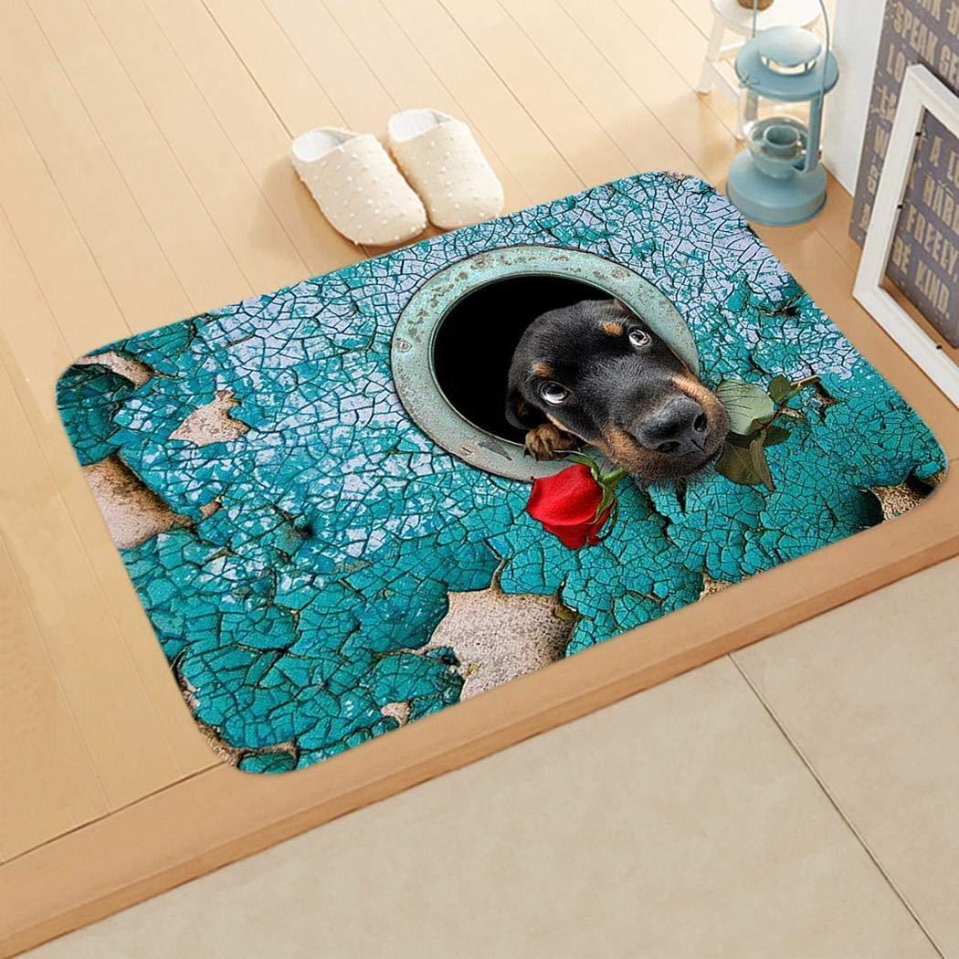 Junio1 Nuevo hogar, baño, Dormitorio, Felpudo, Piso, alfombras Antideslizantes Suaves Alfombras