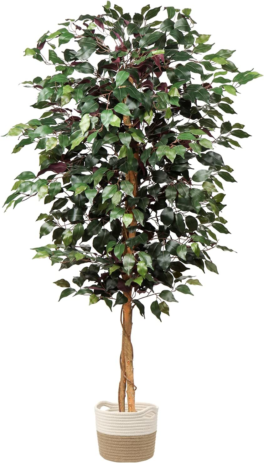 Artificial Ficus Tree 5ft in Cotton Pot Fake Silk Plant with Green Red Leaves Natural Trunk for Indoor Outdoor Home Garden Decor