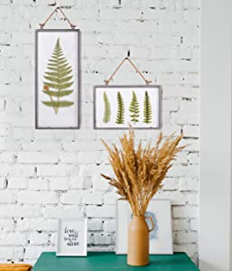 NIKKY HOME Vintage Metal Framed Fern Botanical Glass Wall Print Art Bundle
