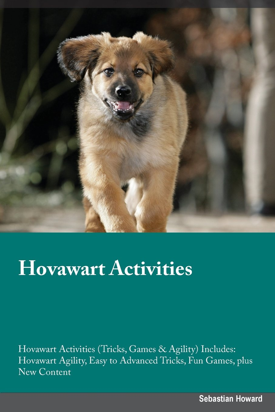 Read Online Hovawart Activities Hovawart Activities (Tricks, Games & Agility) Includes: Hovawart Agility, Easy to Advanced Tricks, Fun Games, plus New Content pdf