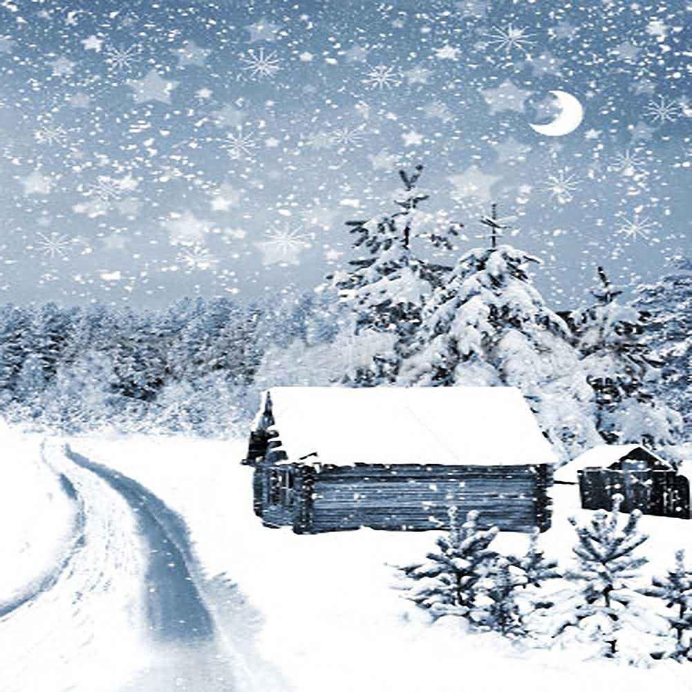 GladsBuy 厚い雪の滝 8フィート×8フィート デジタル印刷 写真撮影背景 クリスマステーマ背景 YHA-524   B073G2M8M2