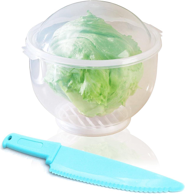 The Best Lettuce Crispers