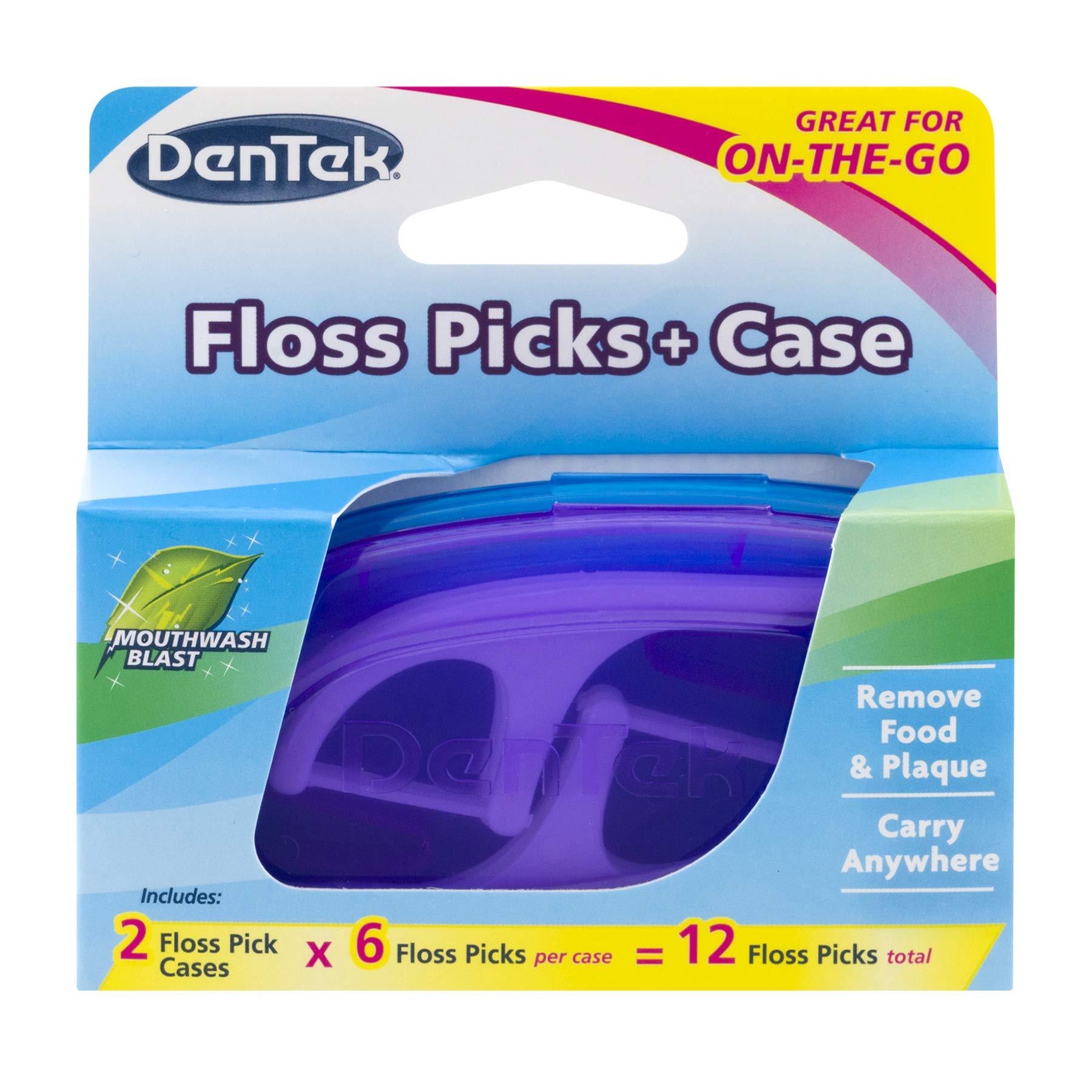 DenTek Flossers With Travel Case | 12 Floss Picks | Pack of 36