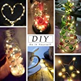 MZD8391 50 Photo Clips String Lights/Holder, Indoor Fairy String Lights for Hanging Photos Pictures Cards and Memos, Ideal Gift Photo Clip Holder