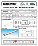 30 Ballastwise DXE2HO5U Ballasts for 2 HIGH Output