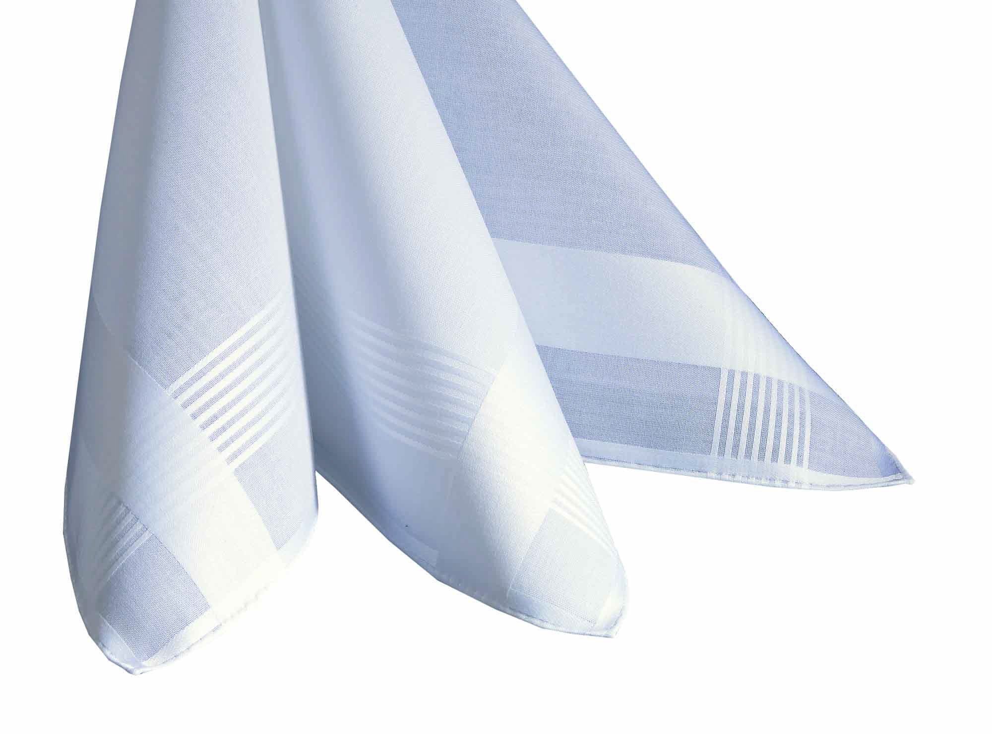 Lehner Switzerland Men's White Cotton Satin Band Handkerchiefs (Set of 2)