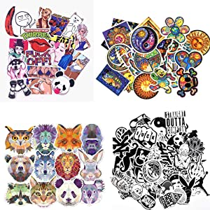 Laptop Stickers Pack [220 PCS] - Car Bumper Stickers,Motorcycle Bicycle Luggage Decal Graffiti Patches Skateboard Stickers, Cool Stickers for Adults
