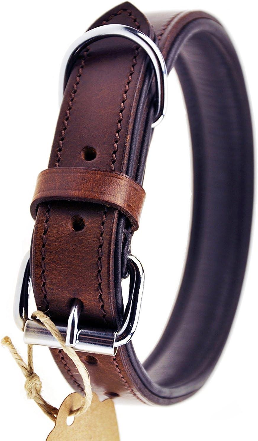 Schnüffelfreunde Collar de Perro de Cuero (L - 36-45cm, Marrón)