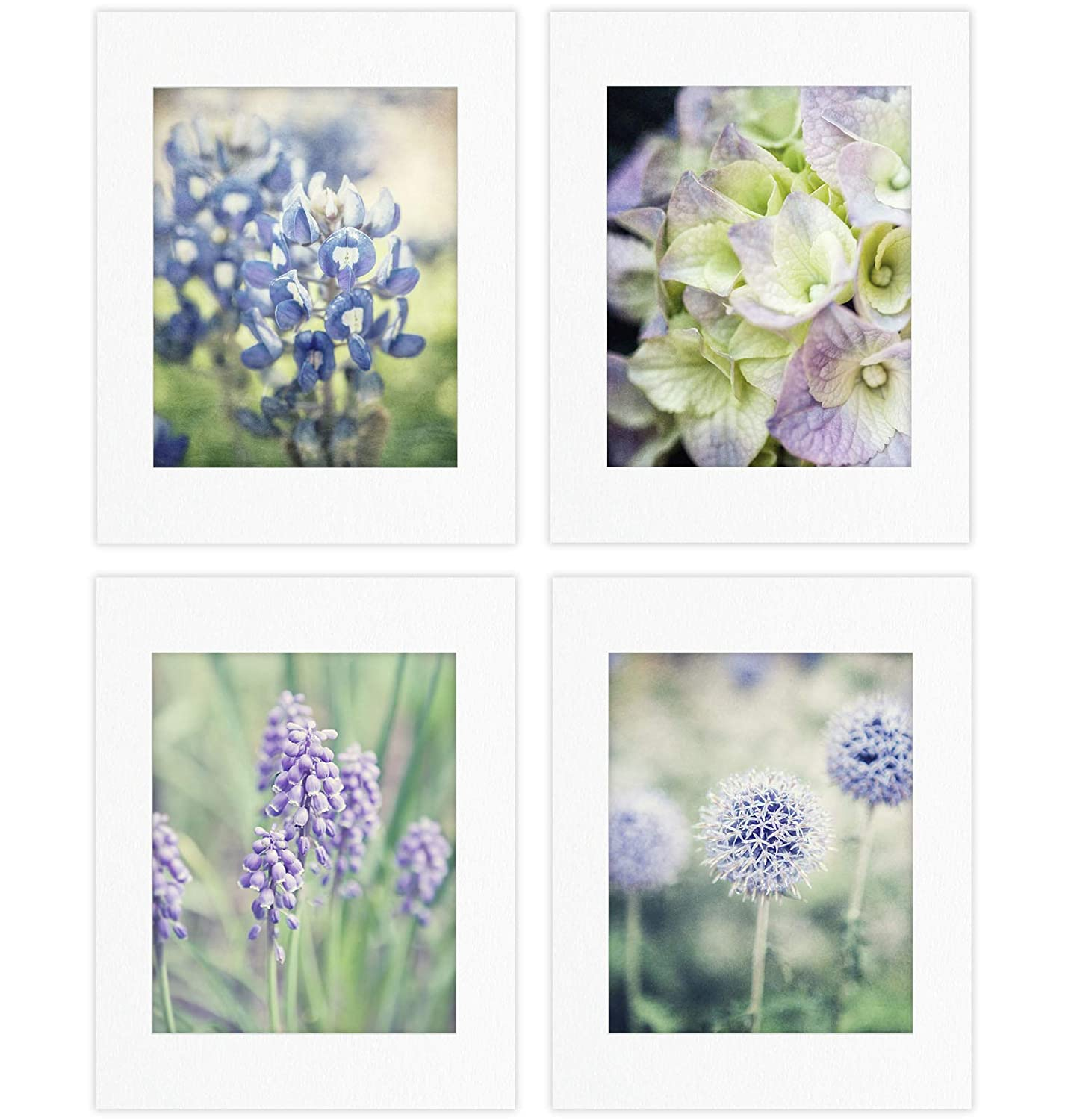 Shabby Chic Set of 4 Floral Photography Prints (Not Framed). Blue and Purple Flower Pictures for Home Decor. 8x10, 11x14 or 16x20. (4 5x7 Prints with 8x10 Mats)