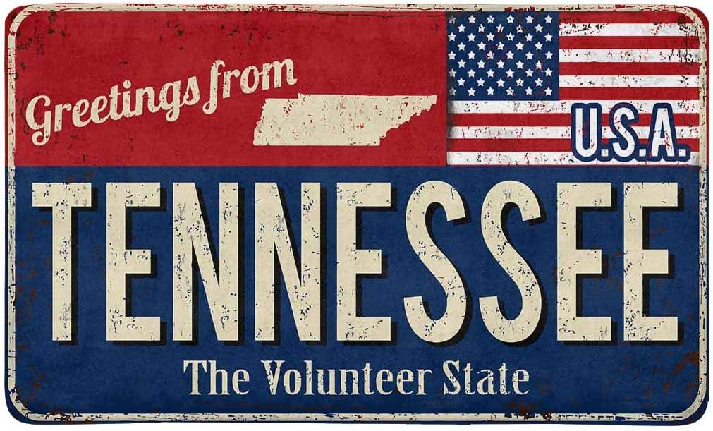 INTERESTPRINT Vintage Greetings from Tennessee The Volunteer State with American Flag Doormat Indoor Entrance Rug Floor Mats Shoe Scraper Door Mat