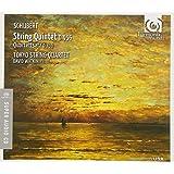 Quintetto Per Archi D 956, Quartettsatz