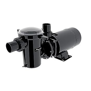 Raypak Protege 1.5 Hp Aboveground Pool Pump