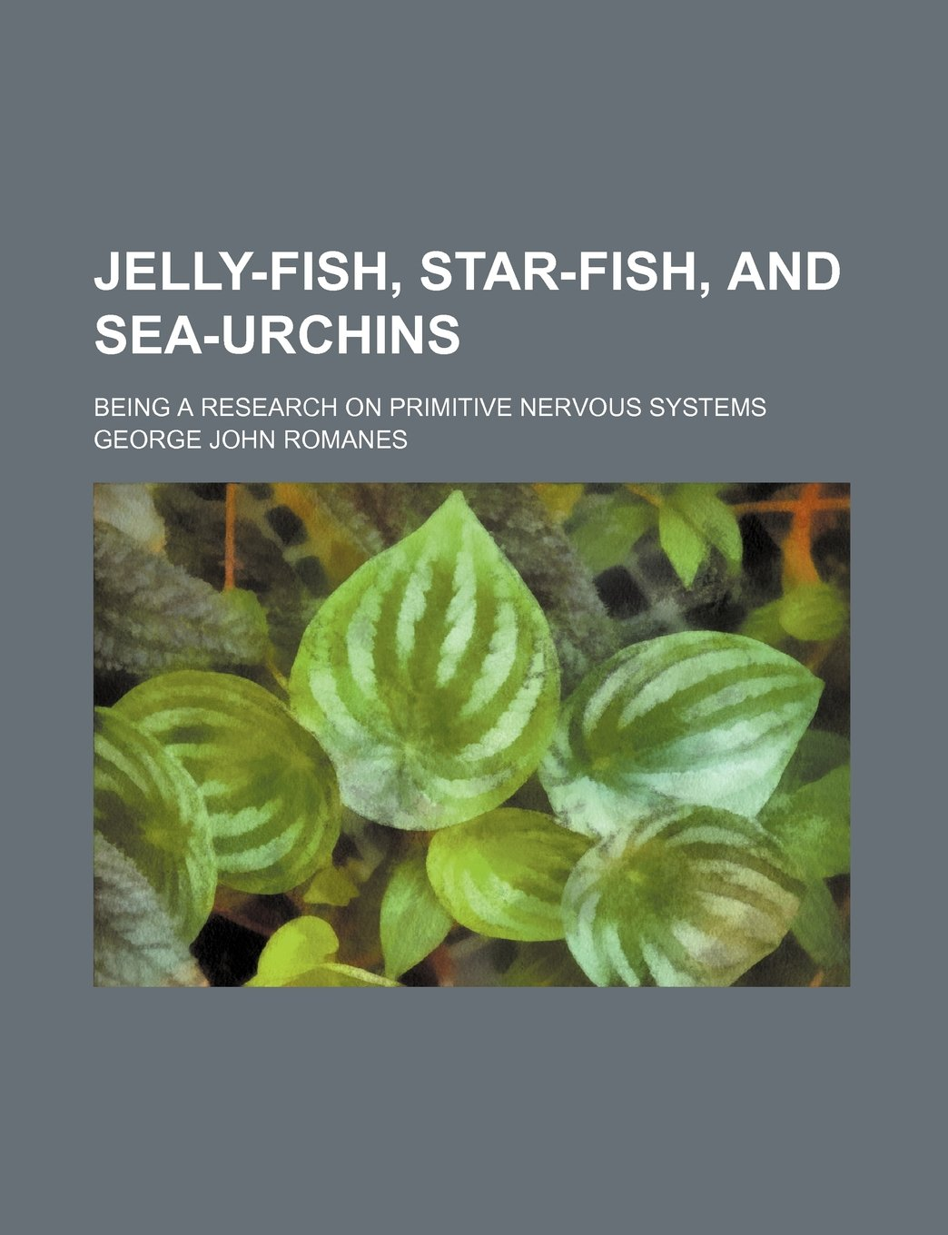 Read Online Jelly-fish, star-fish, and sea-urchins; Being a research on primitive nervous systems pdf