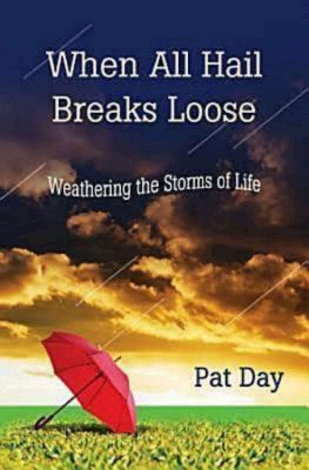 When All Hail Breaks Loose: Weathering the Storms of Life pdf epub