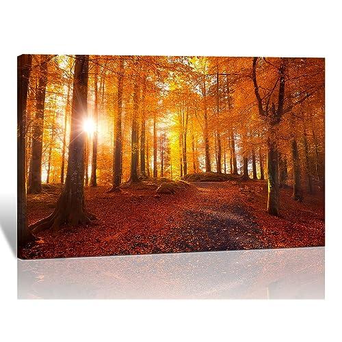 Spirit Up Art Modern Giclee Prints Framed Natural Landscape Artwork Autumn  Sunlight Forest Picture Print To
