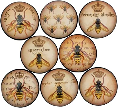 Pull Drawer 8 x Vintage Bee Print Knob Cabinets for Cupboards Handle Doors