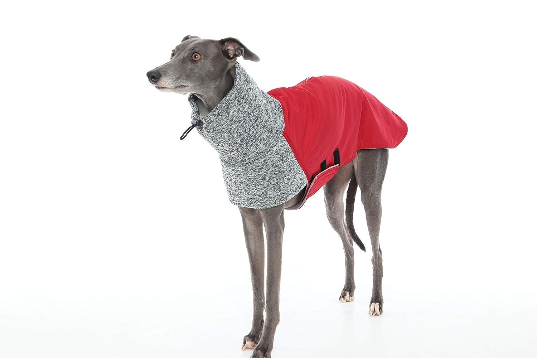 Abrigo bicolor para galgos