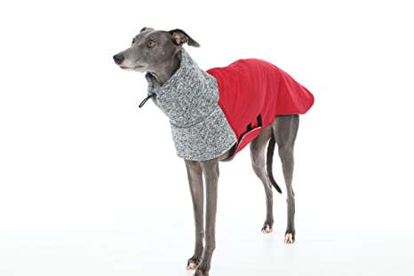 The Trendy Whippet Abrigo de Forro Polar para Perro con diseño de Galgo, Gallo Italiano