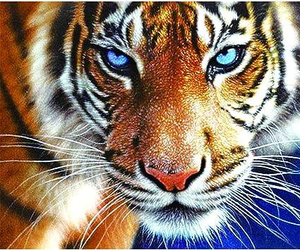 con Cornice in Legno ufengke Kit Pittura Diamante 5D Tigre Bianca Creazione Mosaici Perline Completo Ricamo Punto Croce Strass DIY Disegno 25X35cm