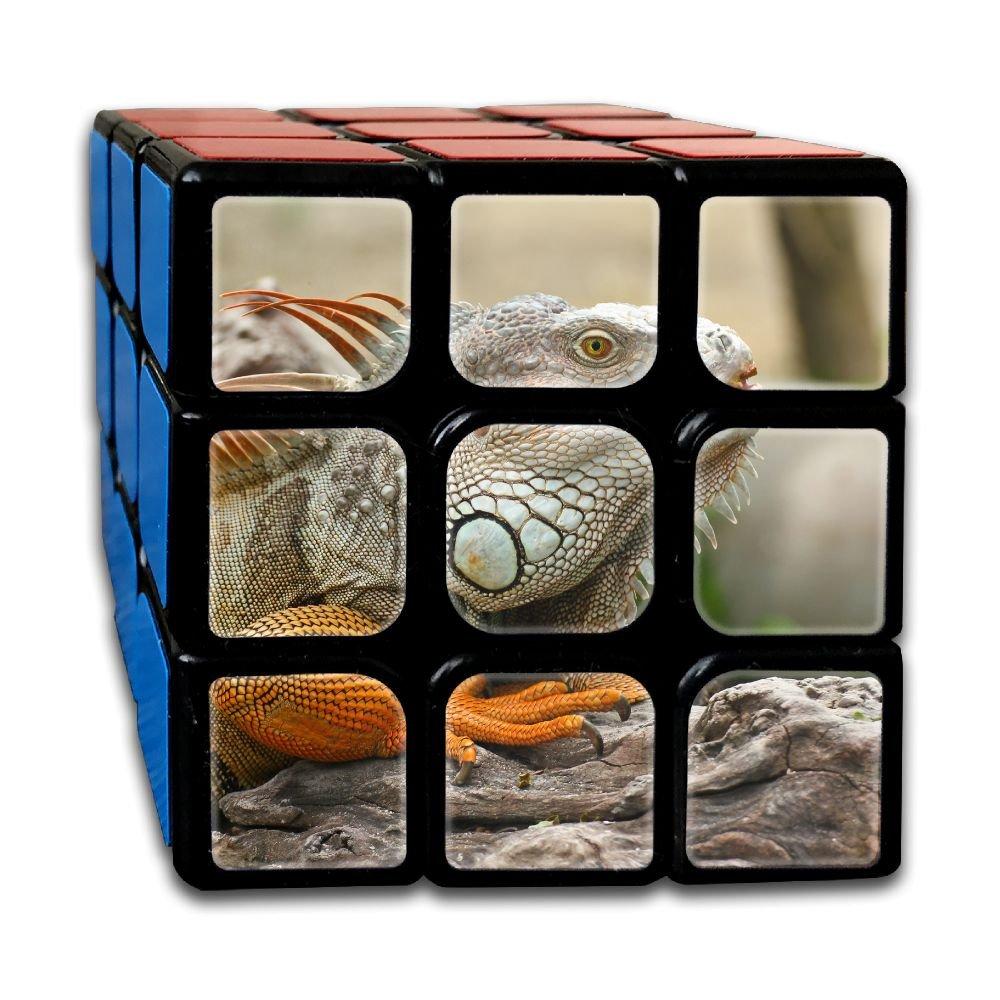 AVABAODAN Chameleon Rubik's Cube Original 3x3x3 Magic Square Puzzles Game Portable Toys-Anti Stress For Anti-anxiety Adults Kids