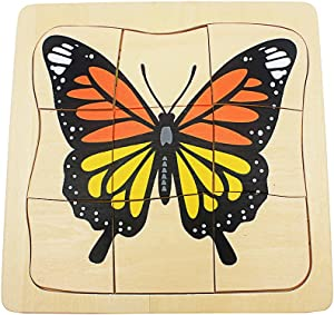 QLL Toddler Montessori Science Toys Life Cycle of Butterfly Grow up 3D Puzzle Panel Preschool Infant Animals & Nature Kindergarten
