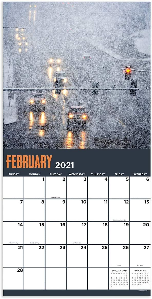 Contacts//Notes Appointment Tracker TF PUBLISHING 2021 Wild Weather Monthly Wall Calendar Home Office Planning //Organization Gloss 12x12