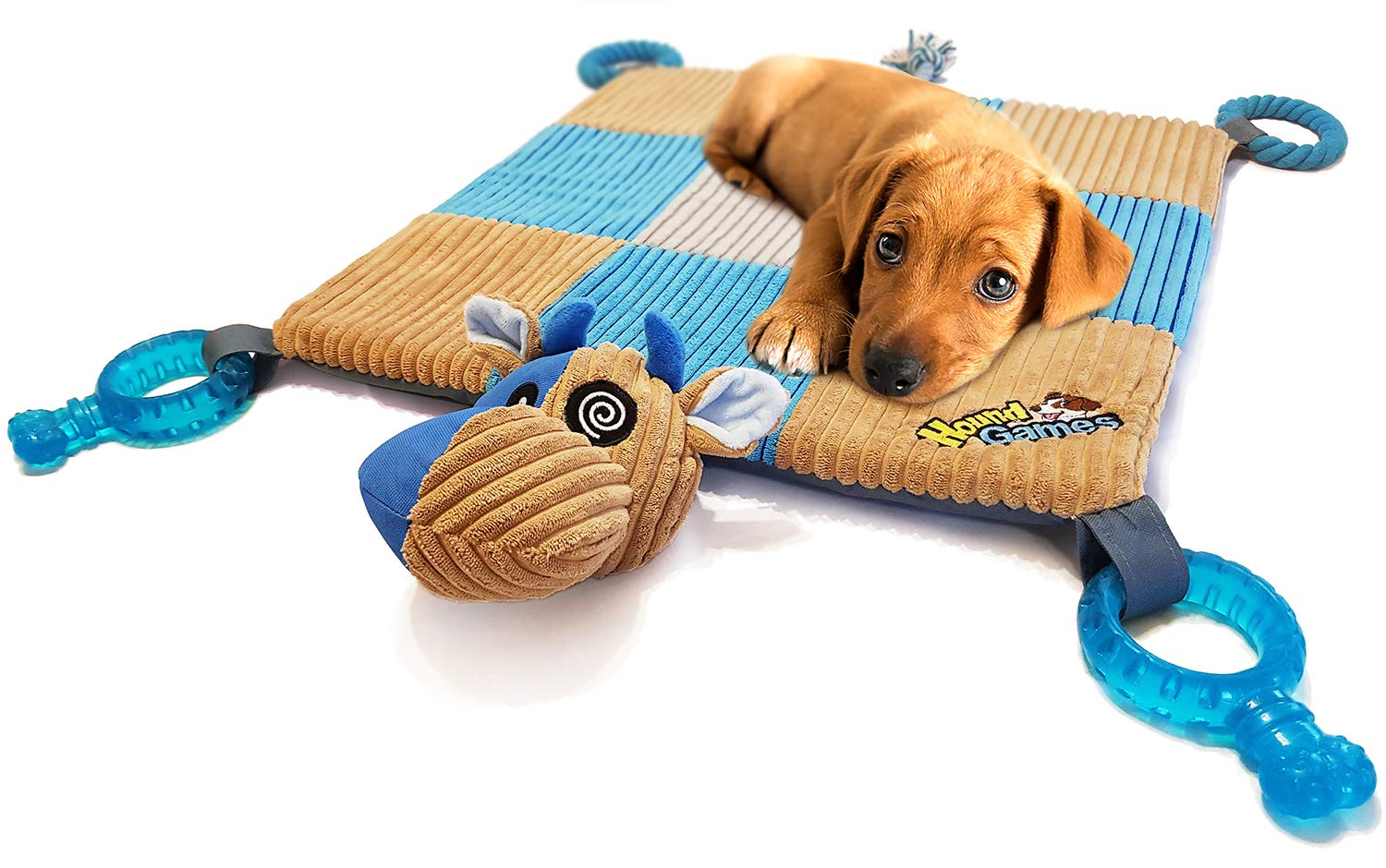 HOUNDGAMES Doggy Play Mat with Puppy Chew Toys, Teething Ropes, Dental Grade Quality, Squeaker Nose, Plush Padded Mat. Designed in The Colors Dogs See Best