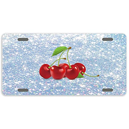 FloralFlames Customized License Plate Cover Decorative Auto Car Vanity Car Tag 6X12