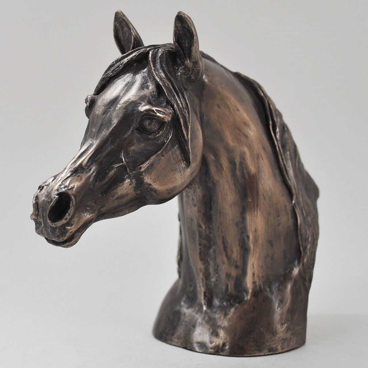 Bronze Horse Eventer Head Signed Harriet Glen by Harriet Glen