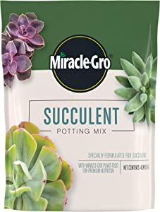 Miracle-Gro Succulent Potting Mix: Fertilized Soil with Premium Nutrition for Indoor Cactus Plants, Aloe Vera and More, 4 qt.