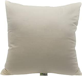 "product image for 26"" x 26"" Euro Pillow - Organic Cotton - Kapok Fill"
