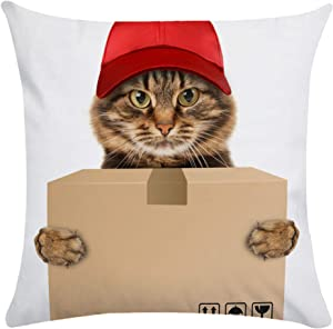 """Linglingjiang Custom Zippered Throw Pillow Covers Funny Cat Pillowcase 18""""x 18"""" Home Decorative Twin Sides Style 11"""