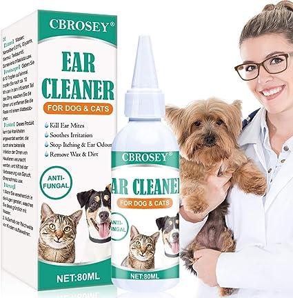 infezioni alle orecchie dei cani