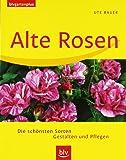 Alte Rosen: Die schönsten Sorten · Gestalten und Pflegen
