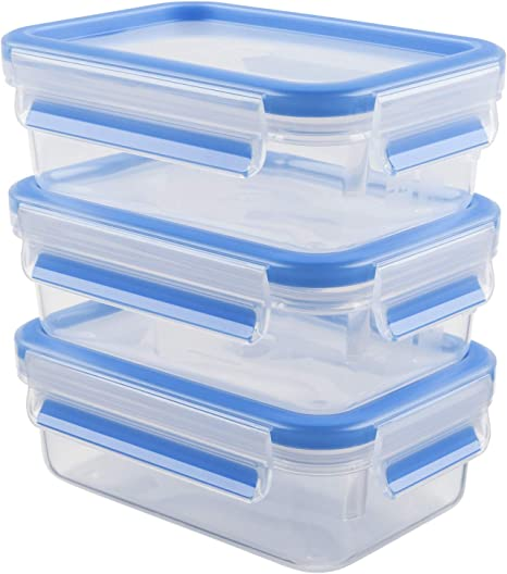 emsa Aufschnittbox CLIP /& CLOSE 2 x 0,6 Liter transparent Gefrierdose Brotdose