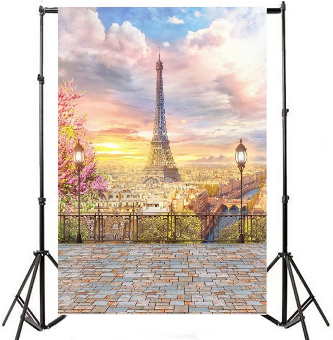 CdHBH 3x5ft Romantic Wedding Brick Wall Photography Studio Background Eiffel Tower Children Photo Background Cloth Portrait Clothing Photo Photography Background Cloth Vinyl Material