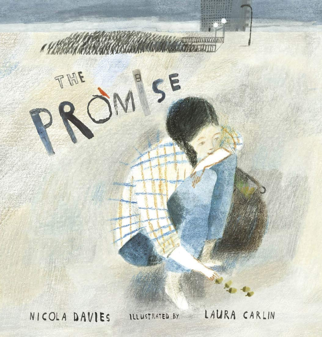 Image result for the promise nicola davies