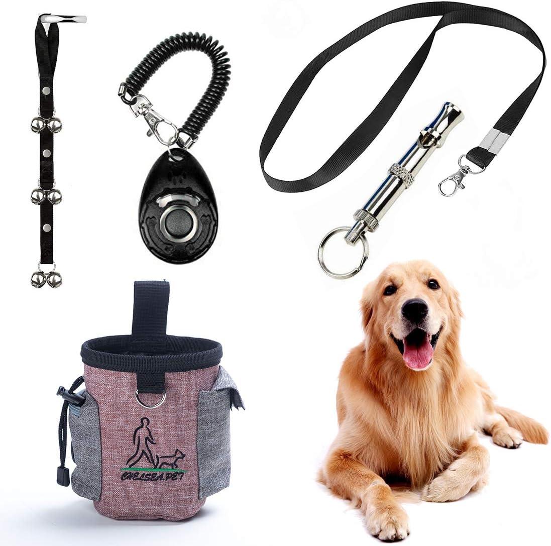 6 Best dog training kit set 1