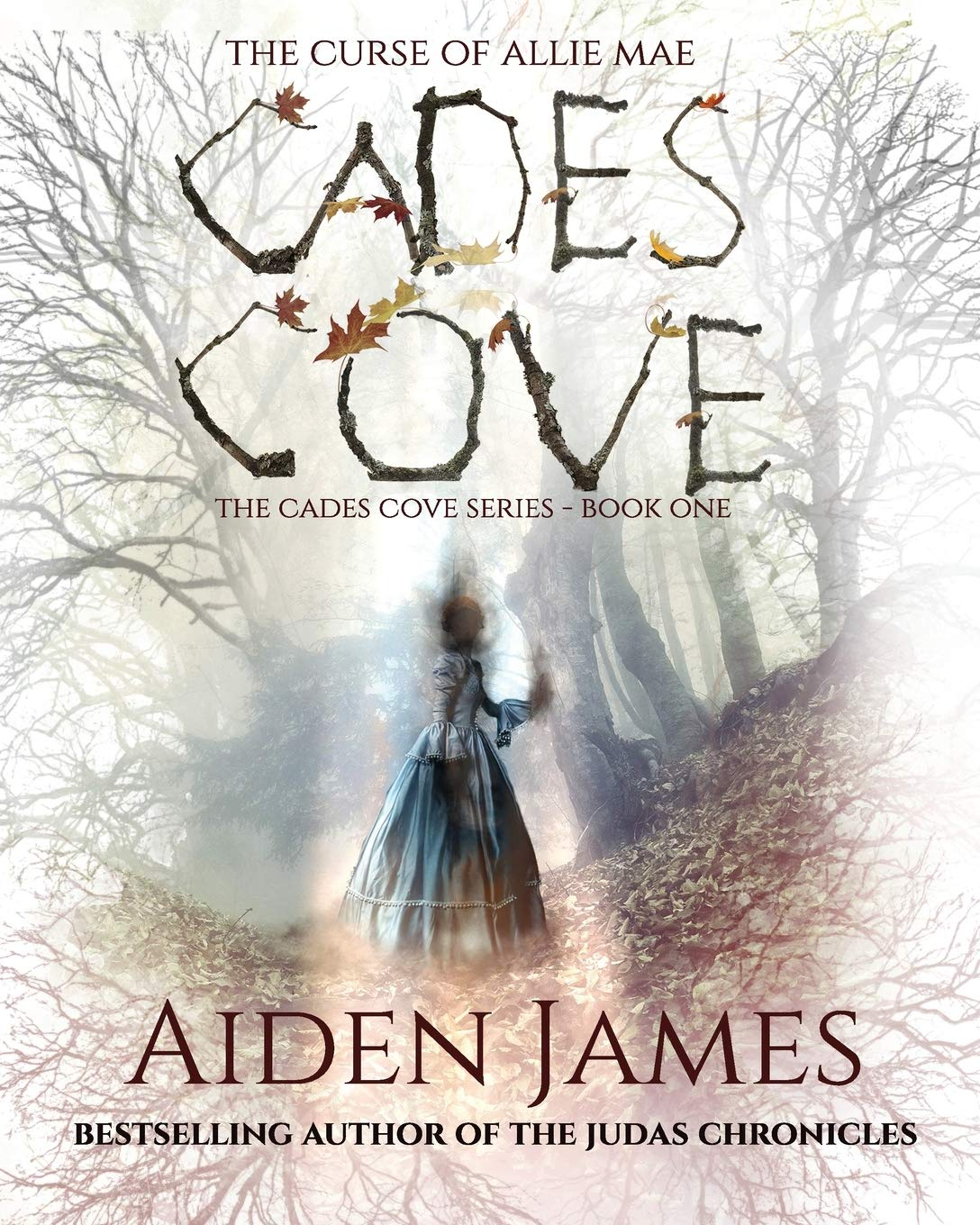 The Curse Of Allie Mae Cades Cove 1 By Aiden James