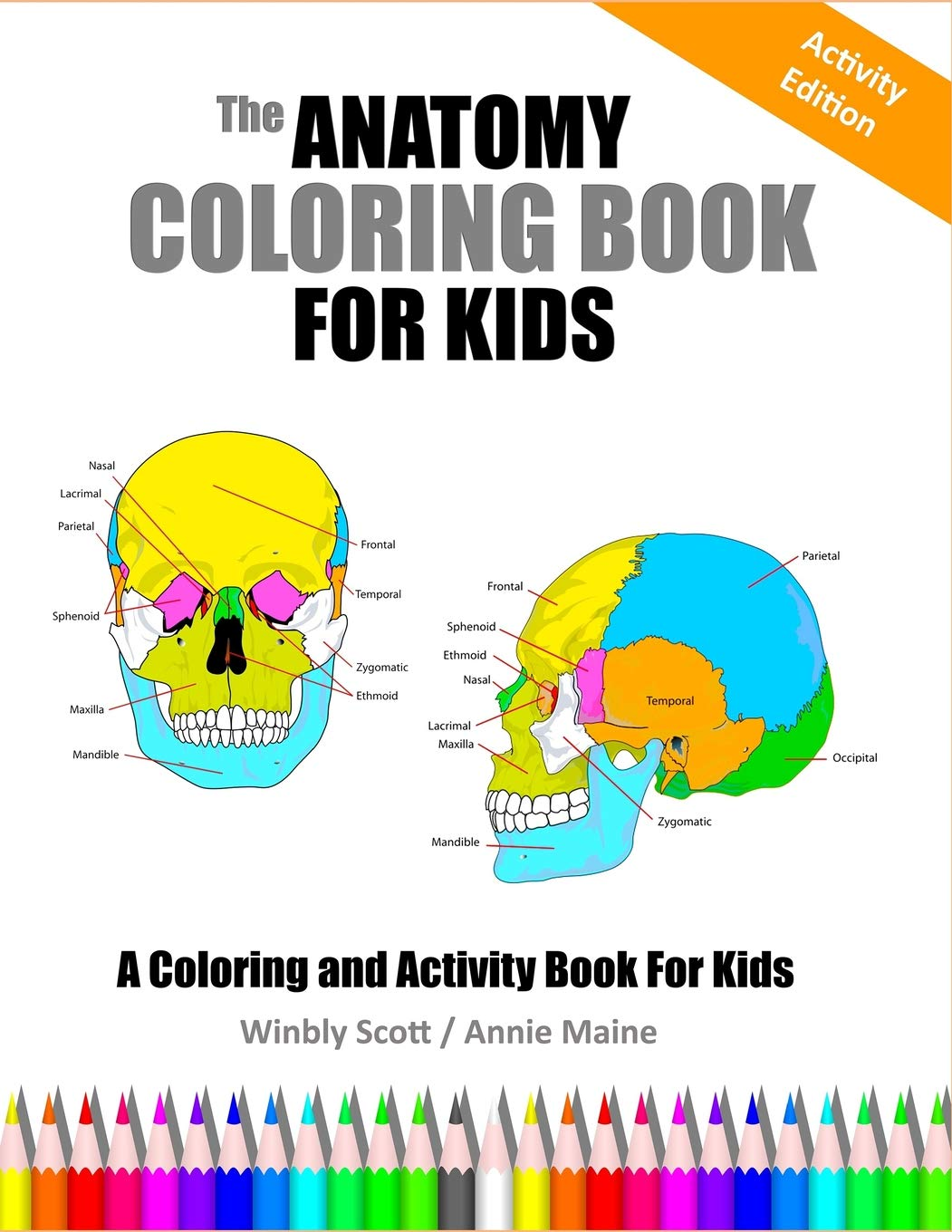 - Amazon.com: The Anatomy Coloring Book For Kids: A Coloring And