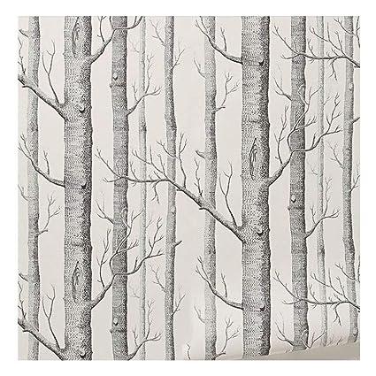 Bouleau Papier Peint