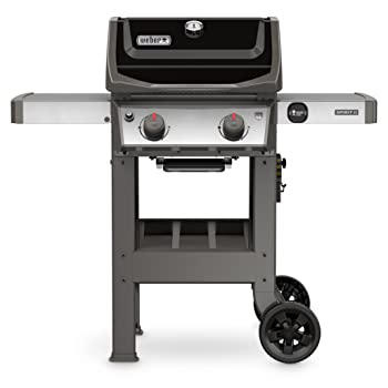 Spirit II 2-Burner Built-in Weber Gas Grill