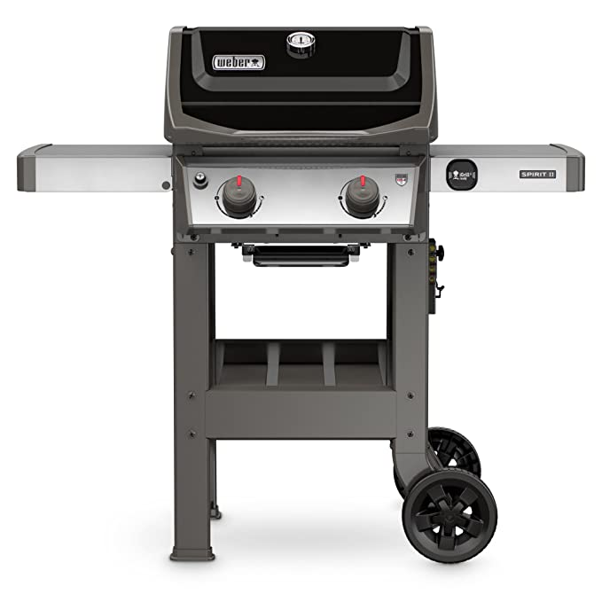 Weber 44010001 E-210 2-Burner Liquid Propane Grill – Best High-End Gas Grill