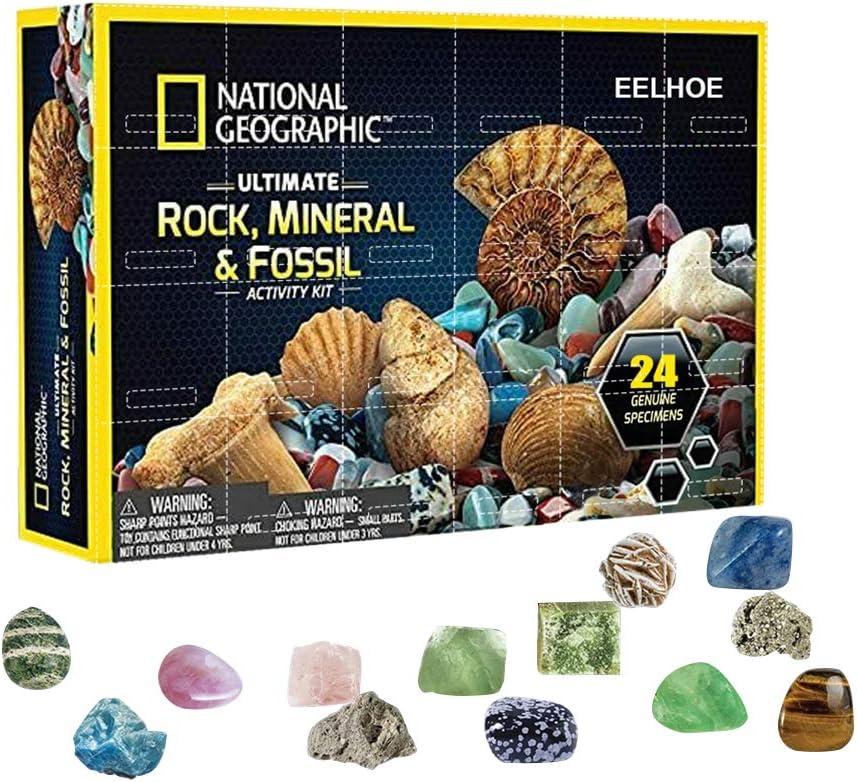 YEKKU niños Colección de Gemas minerales de Roca Caja de Regalo Mega Kit de Piedras Preciosas Juguetes de educación temprana Kit,Material de plastico