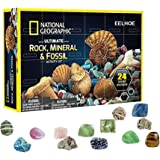 FreshWater Mega Fossil Dig Kit Christmas Advent Calendar Mineral Gift Box Funny Early Childhood Education Toys