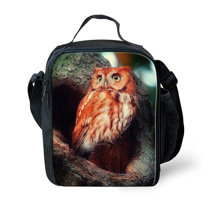 d90b94304d22 Amazon.com: Amzbeauty Owl Lunch Bag for Kids 3D Print Reusable ...
