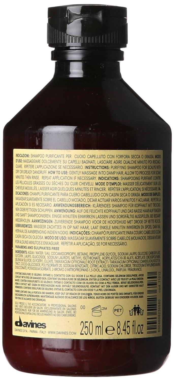 Davines Naturaltech Purifying - Champú, 250 ml: Amazon.es