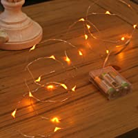 Festive Lights Micro Battery Fairy Lights on Silver Wire, 20 LED
