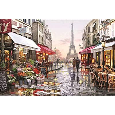 1000 Pieces Sights Views Jigsaw Puzzles Beautiful Scenery Puzzle for Home Decoration: Toys & Games