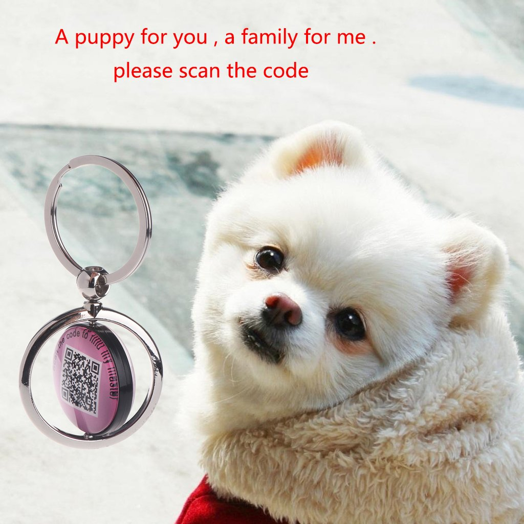 NNDA CO Dog Key Finder,Smart Pet ID Tag, QR Code, NFC Scan, Online Pet Page, GPS Location